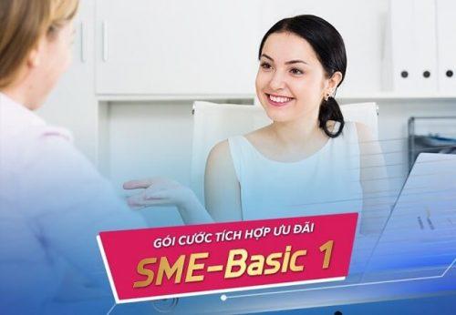 Gói cước tích hợp SME Basic 1 dành cho doanh nghiệp vừa và nhỏ của VNPT