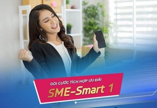 Gói cước tích hợp SME Smart 1 dành cho doanh nghiệp vừa và nhỏ của VNPT